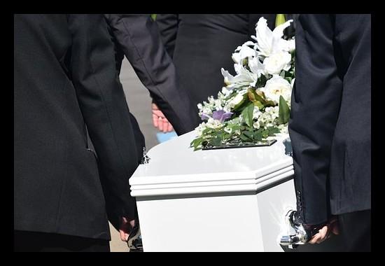 Des cercueils français en carton 100 % écologique Sans_588