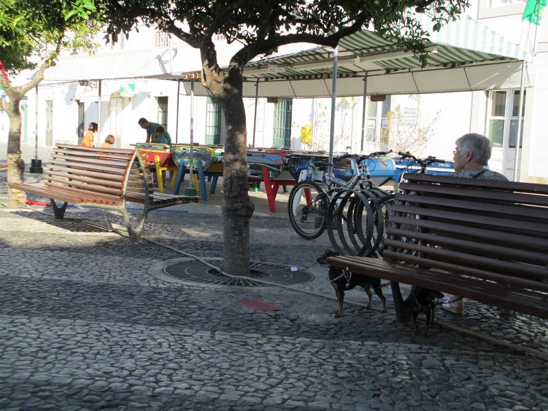 portugal Photo_44