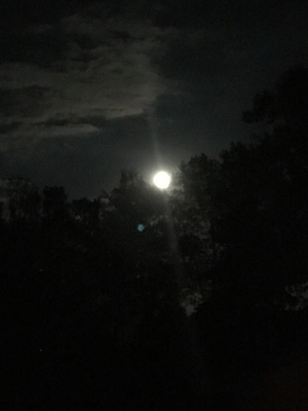 Pleine Lune 5 Octobre - Page 5 Pl10