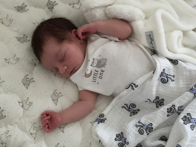 Hello Baby Luna! Img_3212