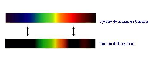 Quel(s) type(s) d'éclairage utilisez ou préférez-vous ? Spectr10