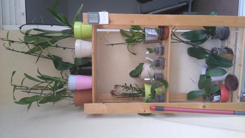 installations de mes belles - Page 3 Dsc_8413