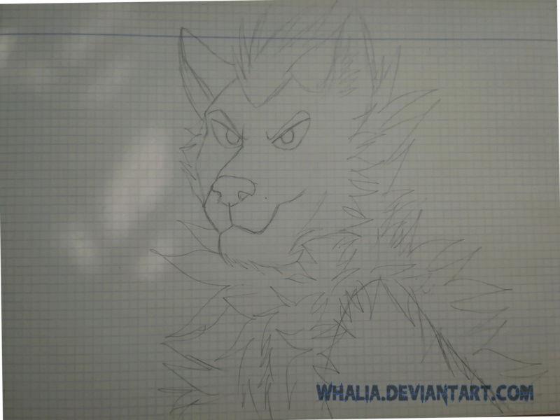 Mi Galería [Whalia] - Página 24 Sketch10