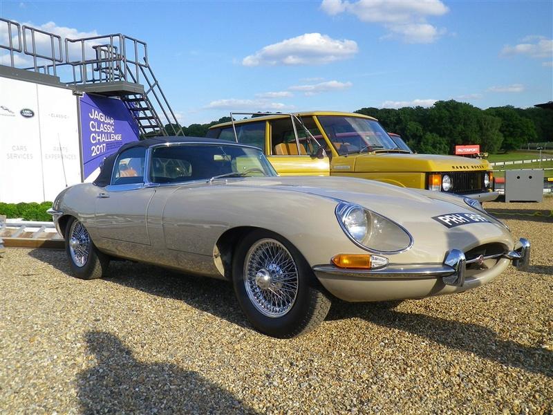 Le Jaguar Heritage Bh071741