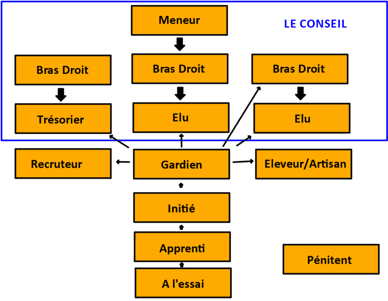 Grades et Droits de la guilde - Sondage Grgzer10