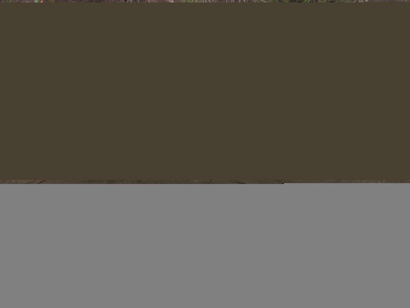 Restauration boitier Masque à gaz --> camouflage Img_4824