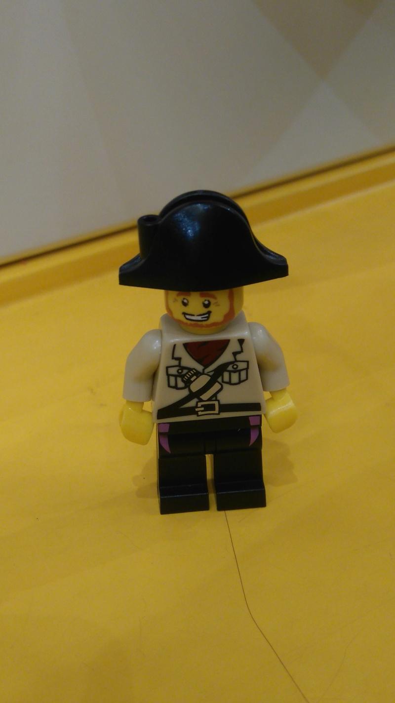 Les personnages du VDF en Lego Dsc_0623