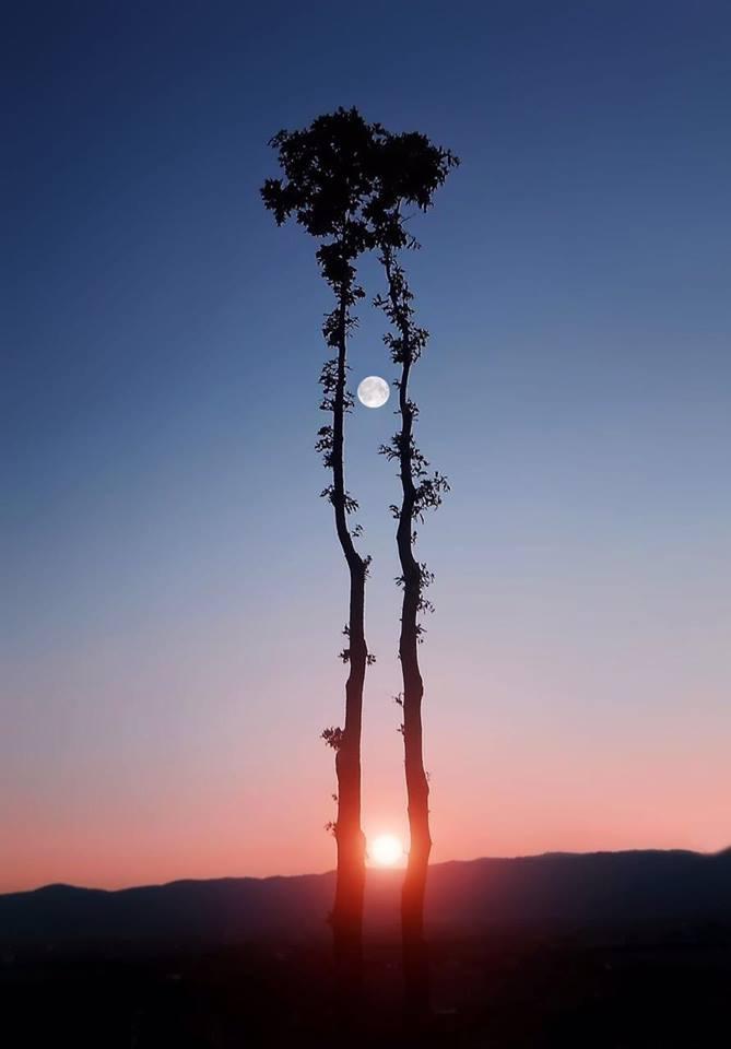 Arien - The Sun & Tillion - The Moon 18835610