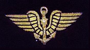 [ Logos - Tapes - Insignes ] LES INSIGNES DE L'AÉRONAUTIQUE NAVALE... - Page 14 1917_110