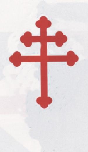 [ Logos - Tapes - Insignes ] LES INSIGNES DE L'AÉRONAUTIQUE NAVALE... - Page 15 6fe-3_10