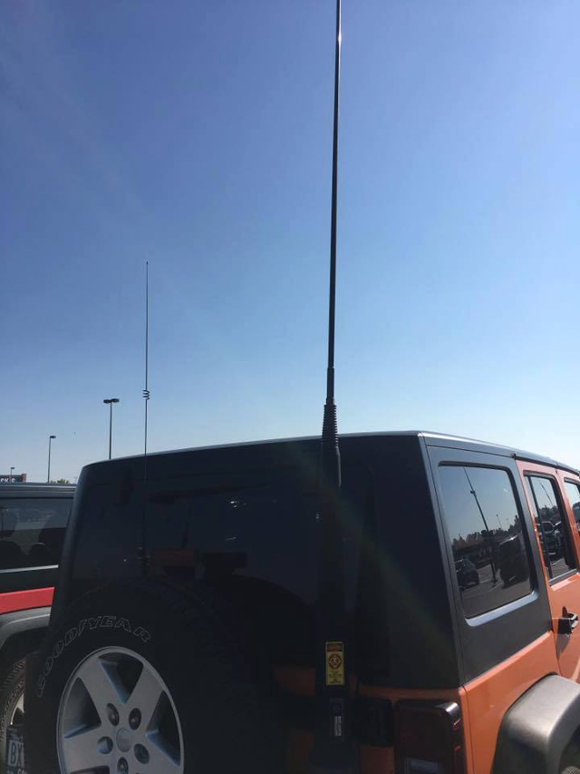 Antennes pour le désert (Safari (4x4) 21687910