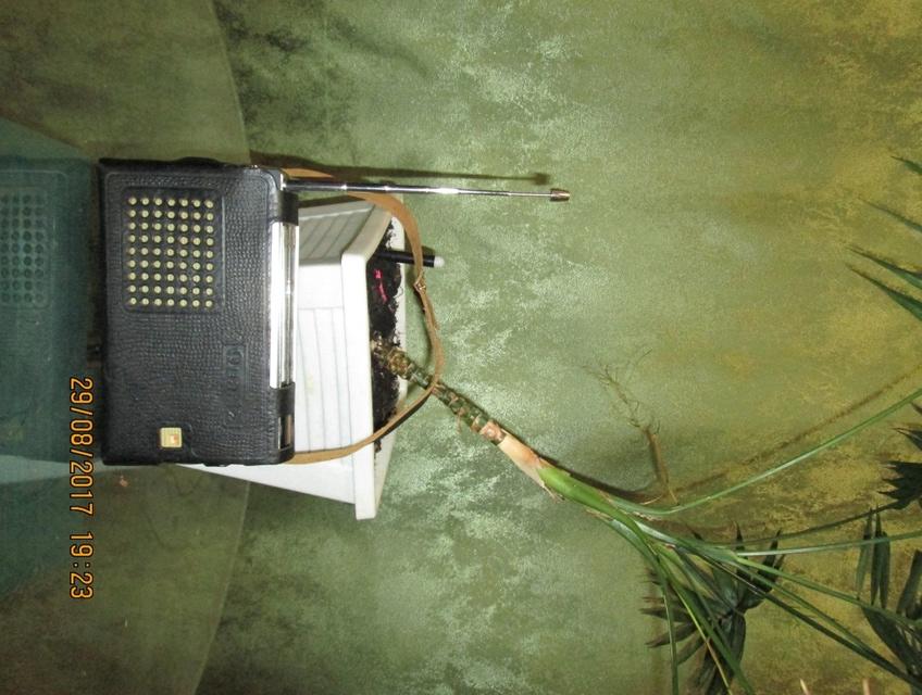 Бытовые радиоприёмники СССР Img_0124