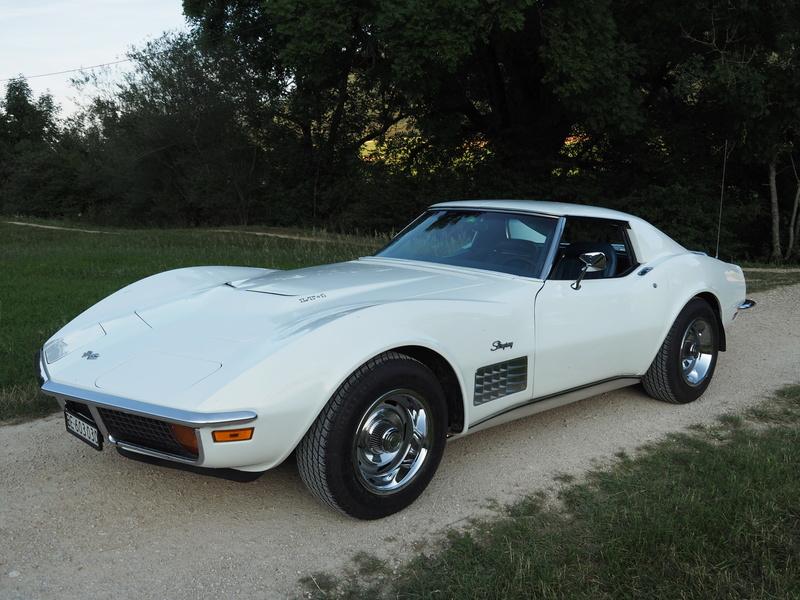 Corvette LT-1 (1971) - Page 34 P7170013