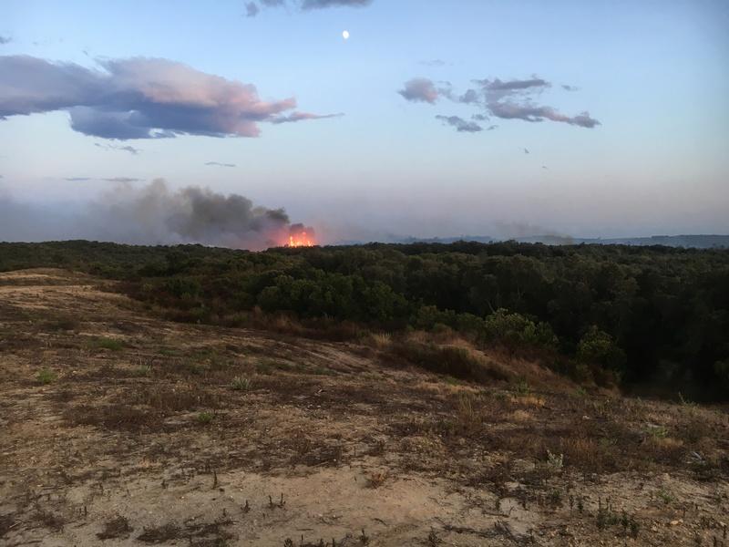 encore les incendies  Img_2310