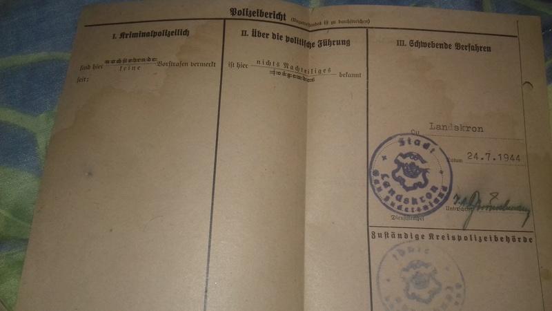 Wehrstammbuch Waffen ss 20170783