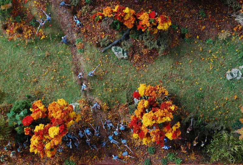 LA BATAILLE DE QUEENSTON HEIGHTS - 13 OCTOBRE 1812 Queens15