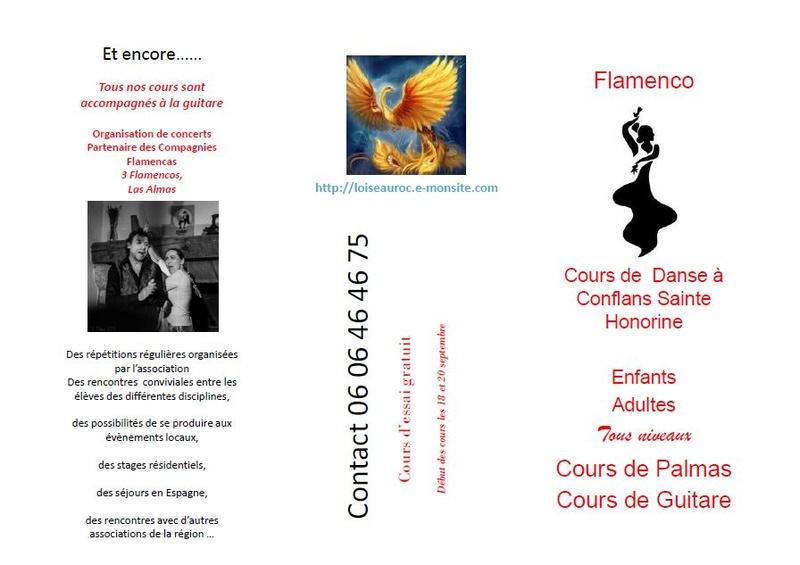 cours de danse / flamenco / palmas  Oiseau12