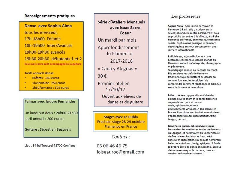 cours de danse / flamenco / palmas  Oiseau13