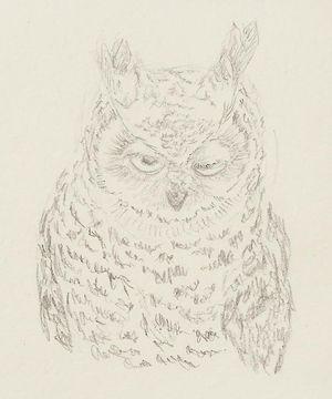 Animal(s) mais non ani'maux - Page 2 15082513