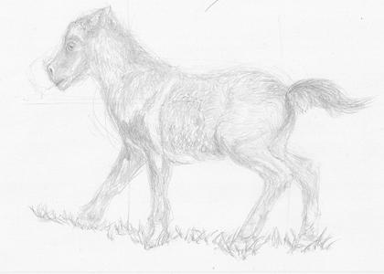 Animal(s) mais non ani'maux - Page 2 17090410