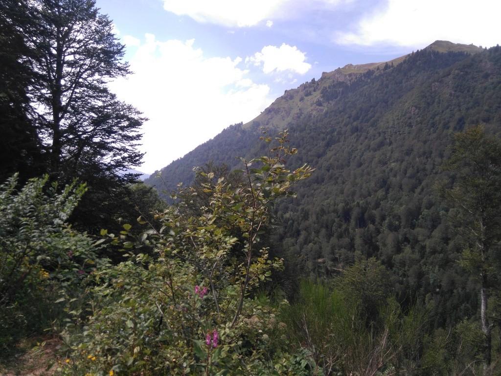 La route des cols: les Pyrénées d'Ouest en Est  - Page 2 Dsc_0061