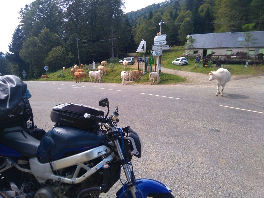 La route des cols: les Pyrénées d'Ouest en Est  - Page 2 Dsc_0067