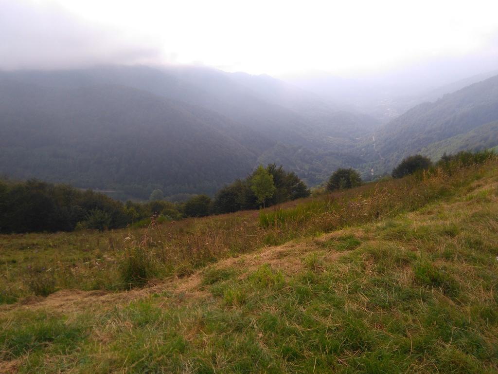 La route des cols: les Pyrénées d'Ouest en Est  - Page 2 Dsc_0071