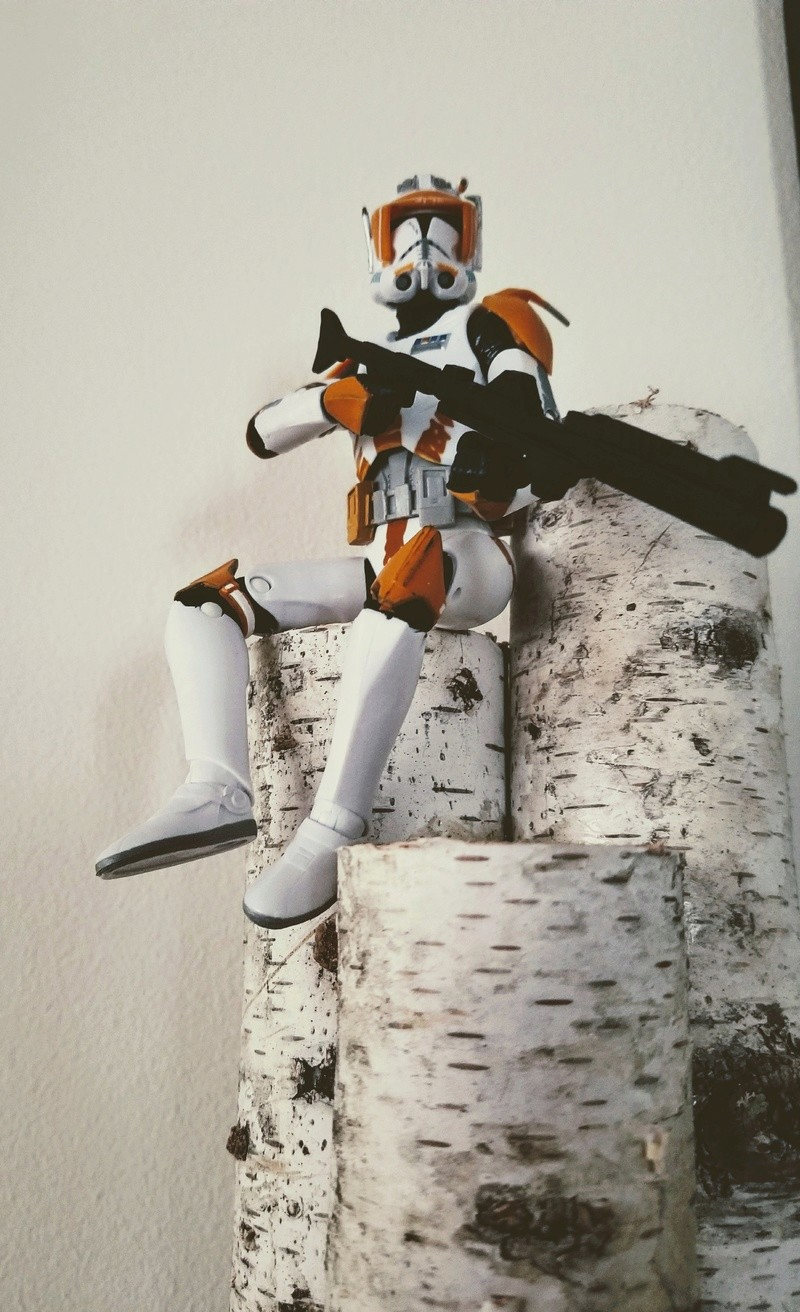 Anyone going to collect the 6 inch Black Series figures? - Page 4 20171014