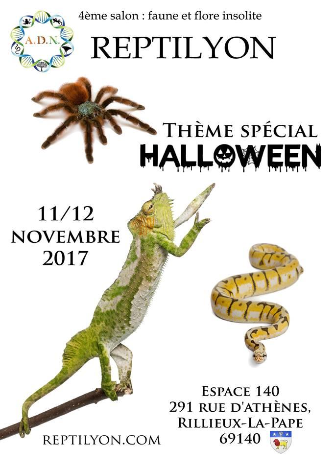 Reptilyon 2017 11 et 12 novembre Reptil10