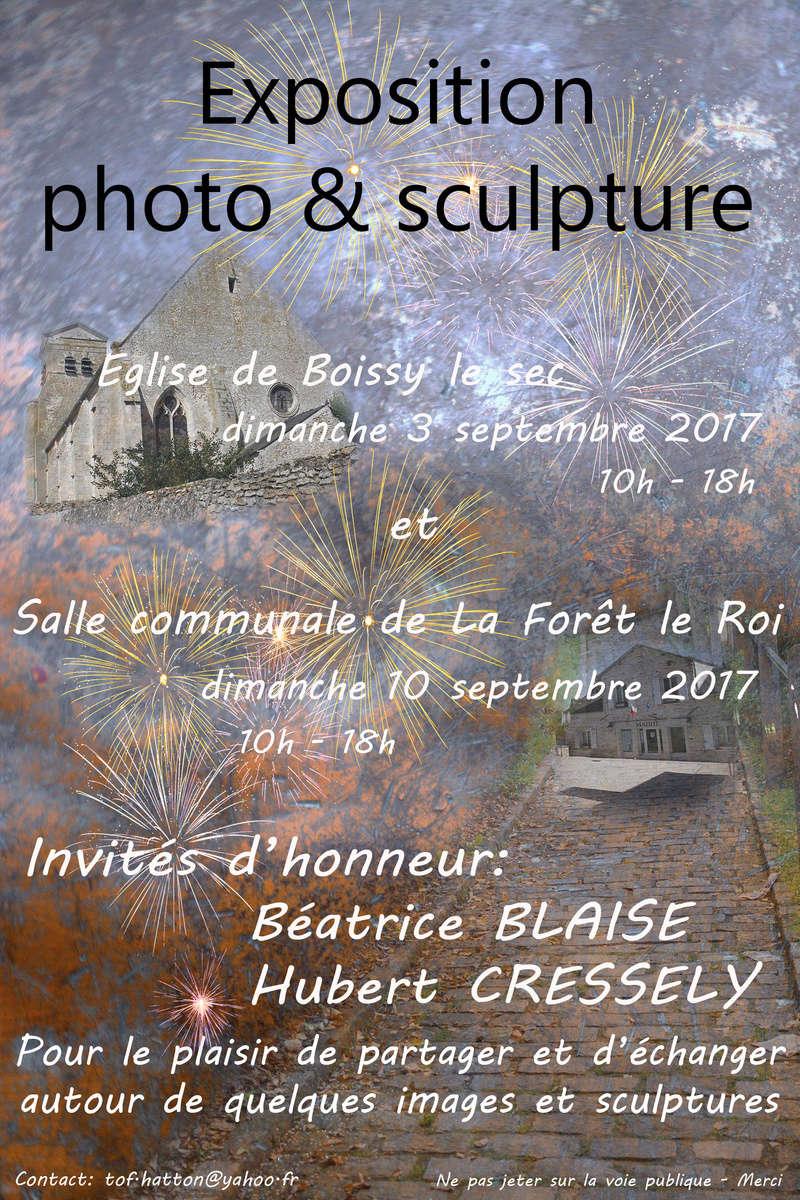 Expo à Boissy le sec le 3/9 et La faoret le Roi le 10/9/2017 Affich11