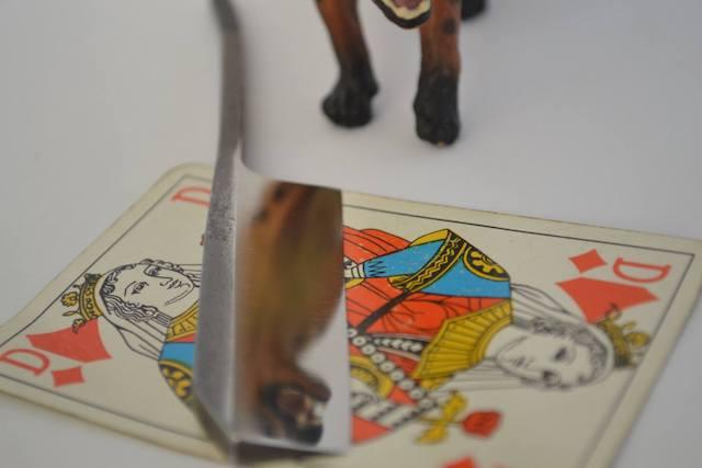 Les rasoirs de sabreur. - Page 9 H10