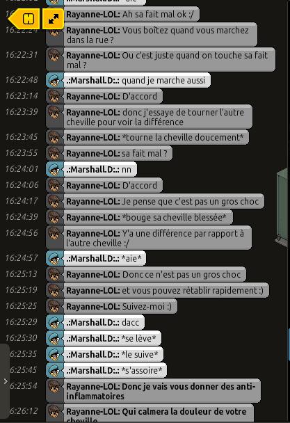 [C.H.U] Rapports d'actions RP de Rayanne-LOL Voili400