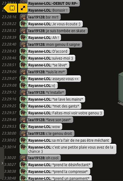 [C.H.U] Rapports d'actions RP de Rayanne-LOL Voili407