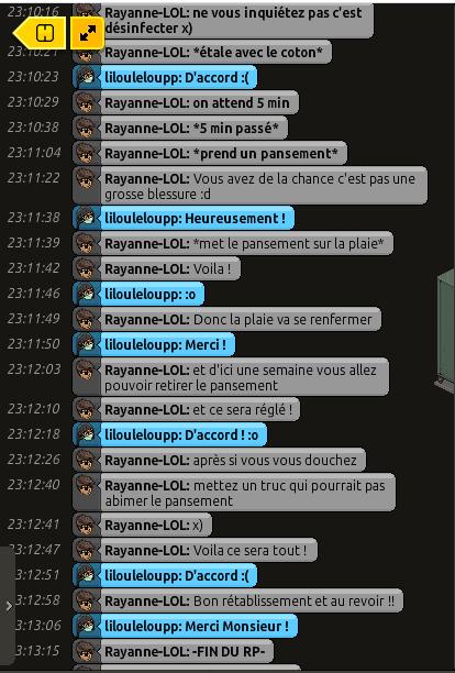 [C.H.U] Rapports d'actions RP de Rayanne-LOL Voili441