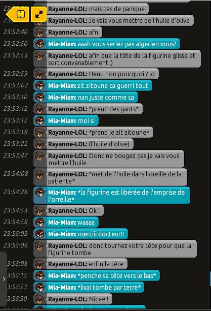 [C.H.U] Rapports d'actions RP de Rayanne-LOL Voili452