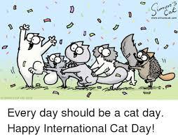 8 août - Journée Internationale du chat Images10