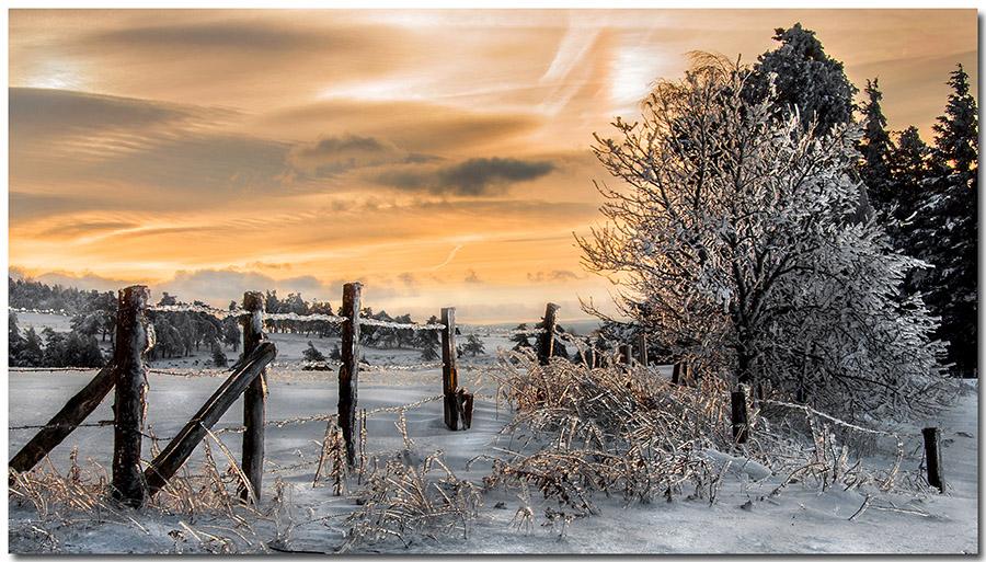 chaleur glaciale  Libre_10