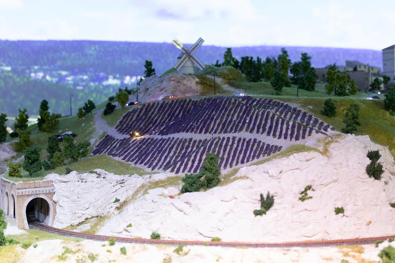 Août 21 : Ma visite à Mini-World Côte d'Azur 6w7a6717