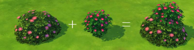 [Débutant] Astuces et idées pour aménager un beau jardin 3a10