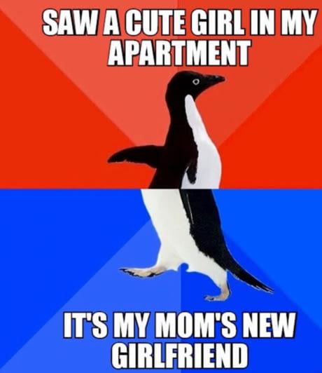 Ces images qui vous font rire. - Page 5 Amaveo10