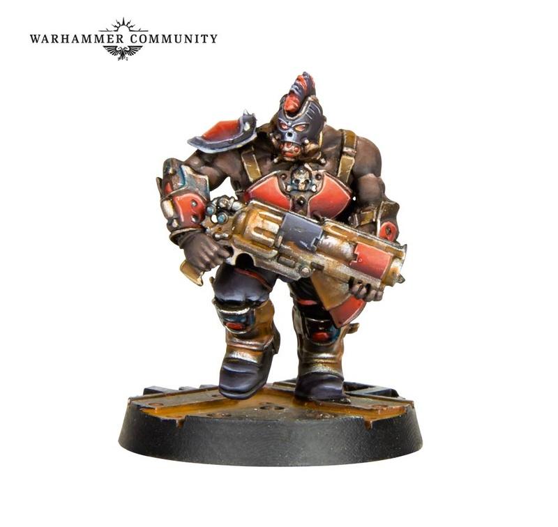 En attendant Necromunda : Shadow War  Armageddon Fw-ope11
