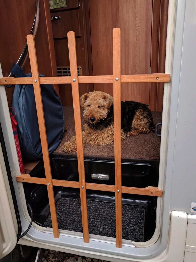 Dog guard Img_2014