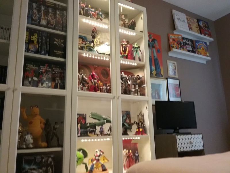 Mes jouets !  20170948