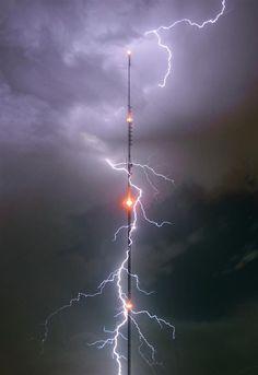 Electroforum 7f628e10
