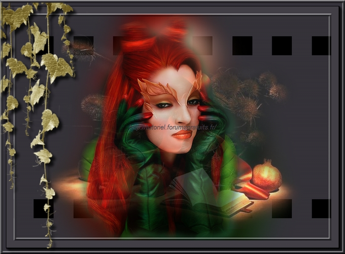 """ Alida""Forum Graphisme  Tutoriel Photofiltre Studio Fin_du10"