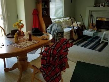 J'ai enfin pu sortir les guitares de l'atelier Salon_10