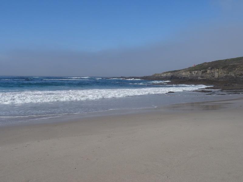 Cabo de Home et praia de Melides Dsc03113