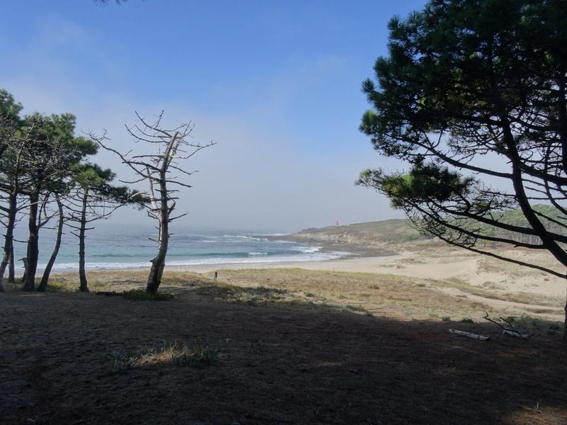 Cabo de Home et praia de Melides Dsc03115
