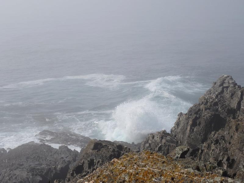 Cabo de Home et praia de Melides Dsc03211