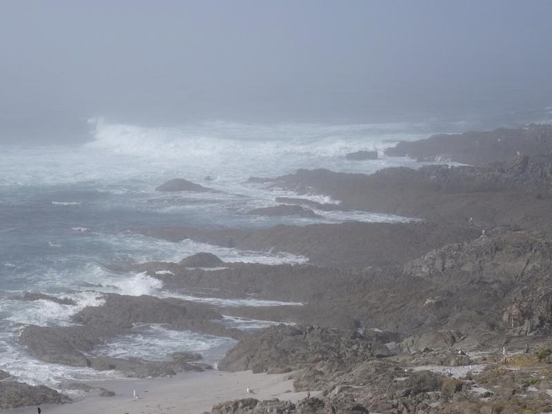Cabo de Home et praia de Melides Dsc03214